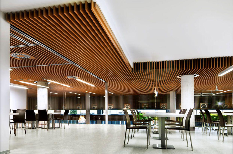 acoustigrid rosound de paredes y techos con lamas de madera