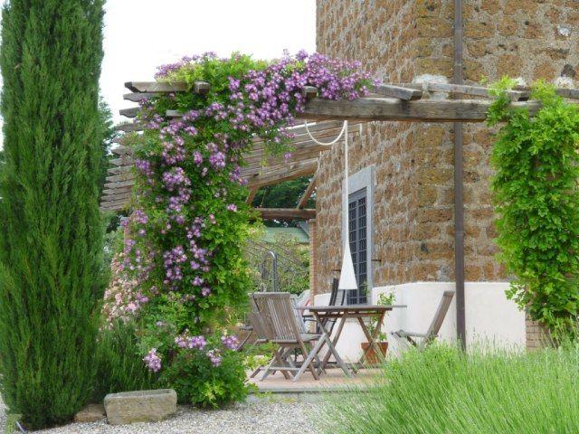 Pergola Begrünen Lila Clematis Holz Terrassenmöbel | Garten ... Gartenlaube Pergola Begrunen