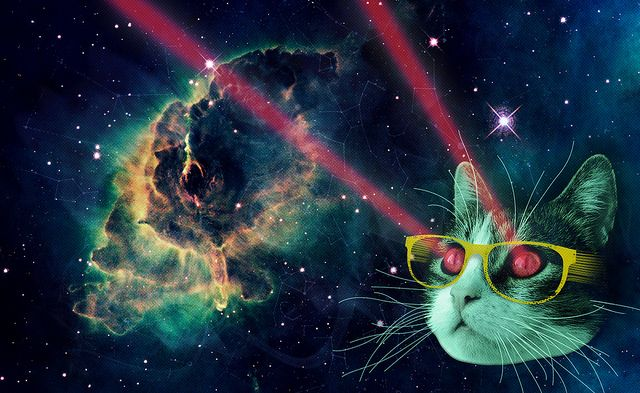 Laser Cat In Space By Anna L Via Flickr