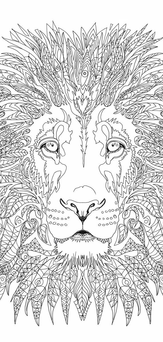Lion Coloring Pages Printable Adult Book Clip Art Hand Drawn Original Zentangle Colouring Page For Download Doodle Picture