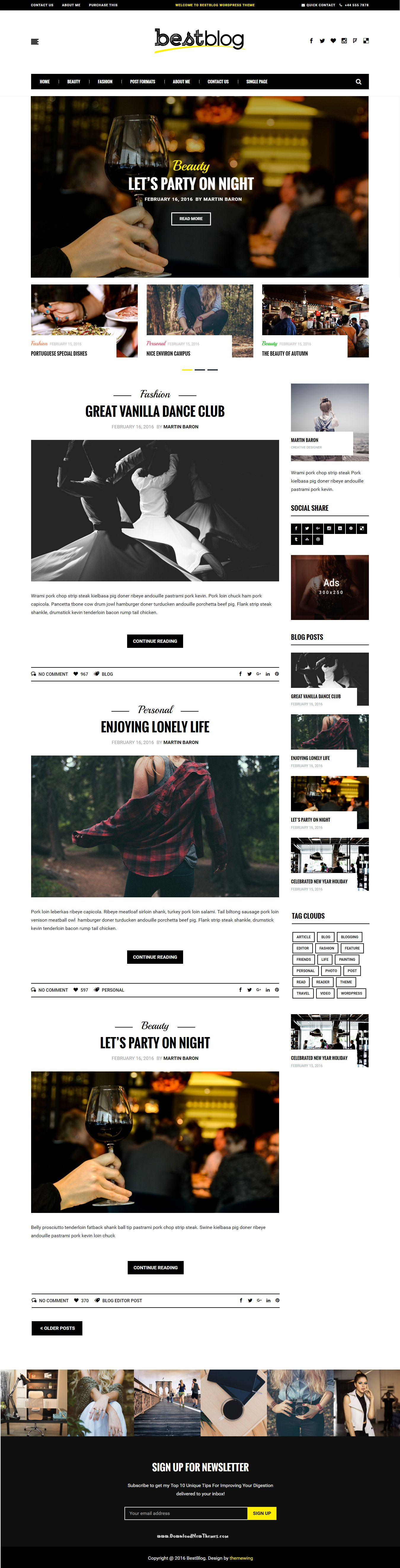 BestBlog - Responsive WordPress Blog Theme | Wordpress blog themes ...