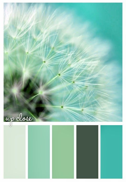 Gold On The Ceiling Color Palette Of Turquoise Green Dark Teal Mint Celery Dandelion Art