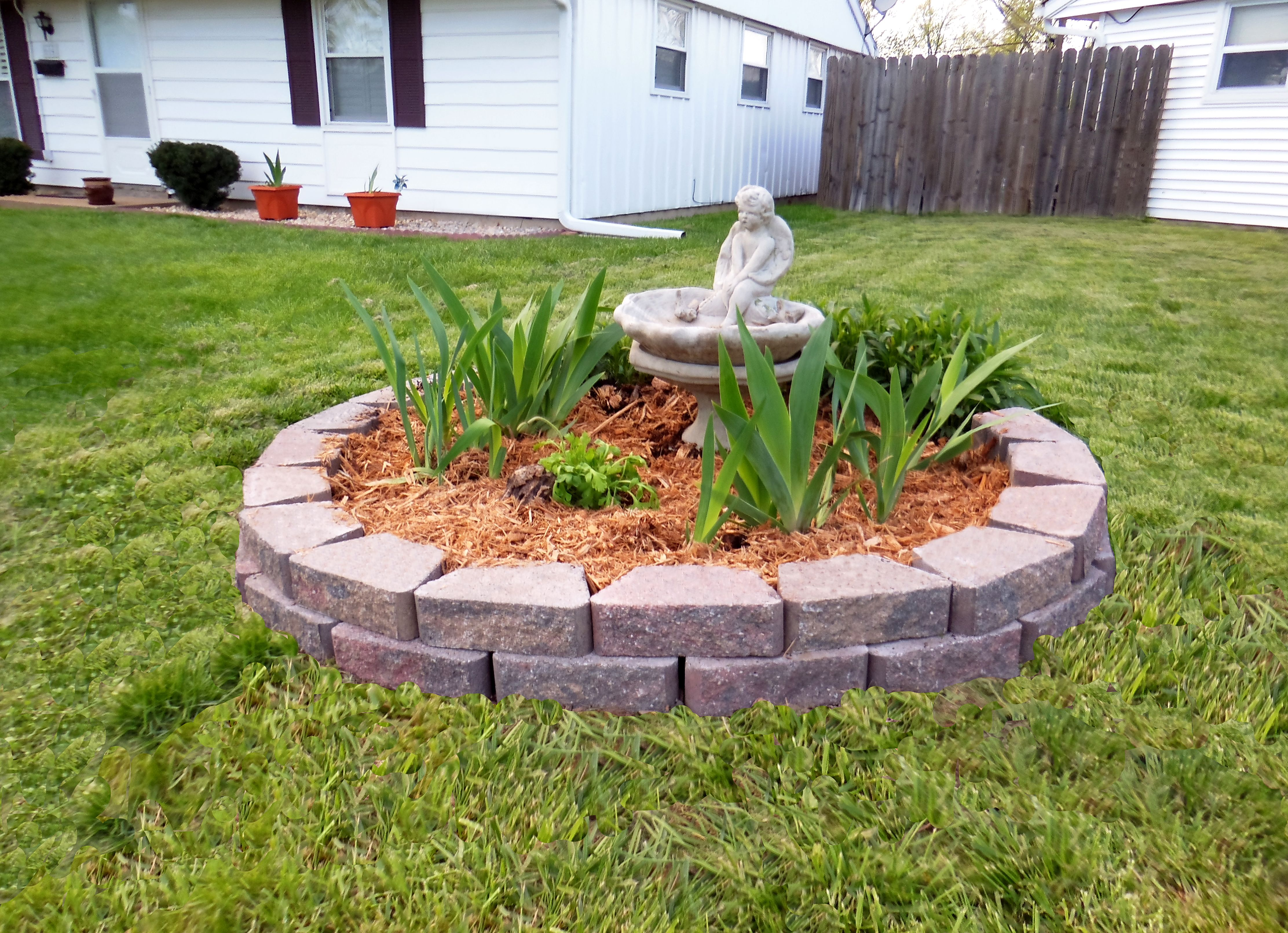 landscaping tree stump