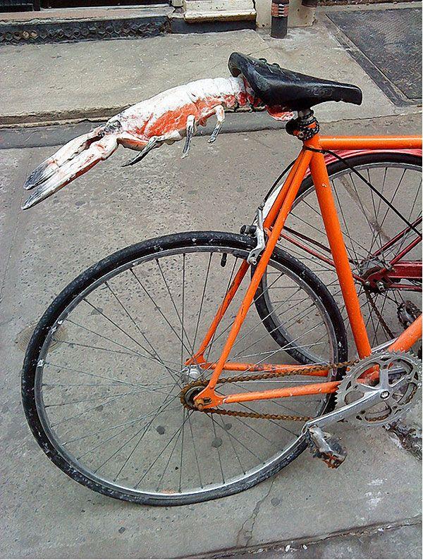 Save Ass Bike Pinterest