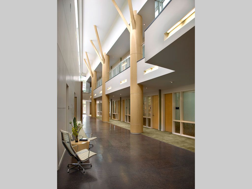 Fantastisch *Exec Office* Natural Partitions Of Varia Ecoresin Provide Privacy, Yet Let  The Light