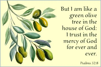 Psalm 52:8  ❤God's Word†♰❤