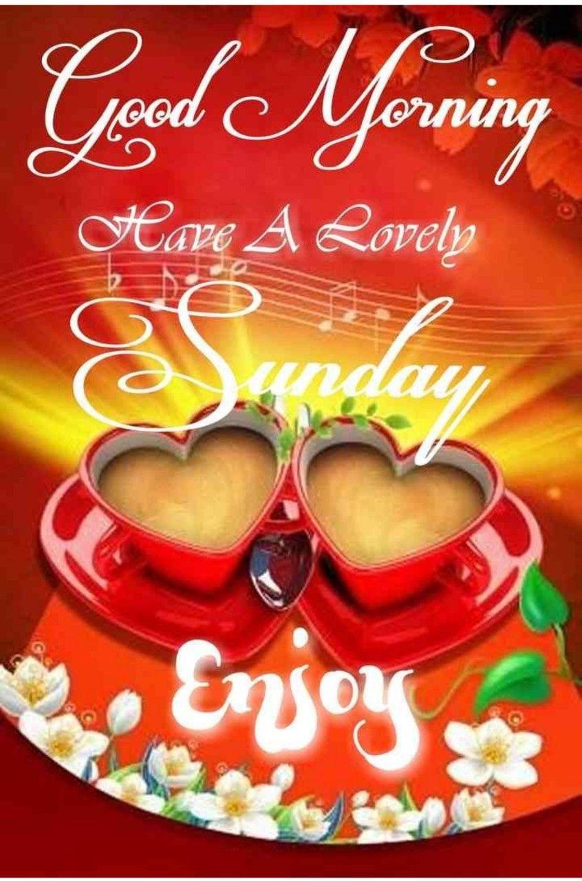 Good Morning Sunday Greetings   Sunday greetings, Good morning ...