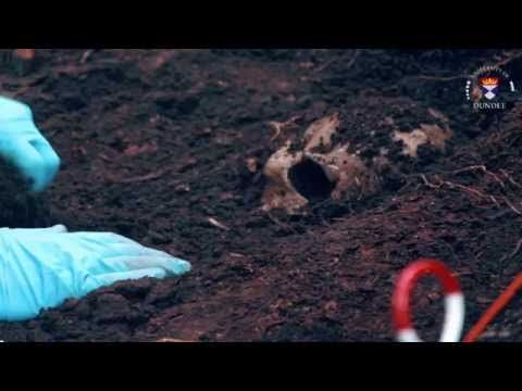 What Is Forensic Anthropology Forensic Anthropology Forensics Forensic Science