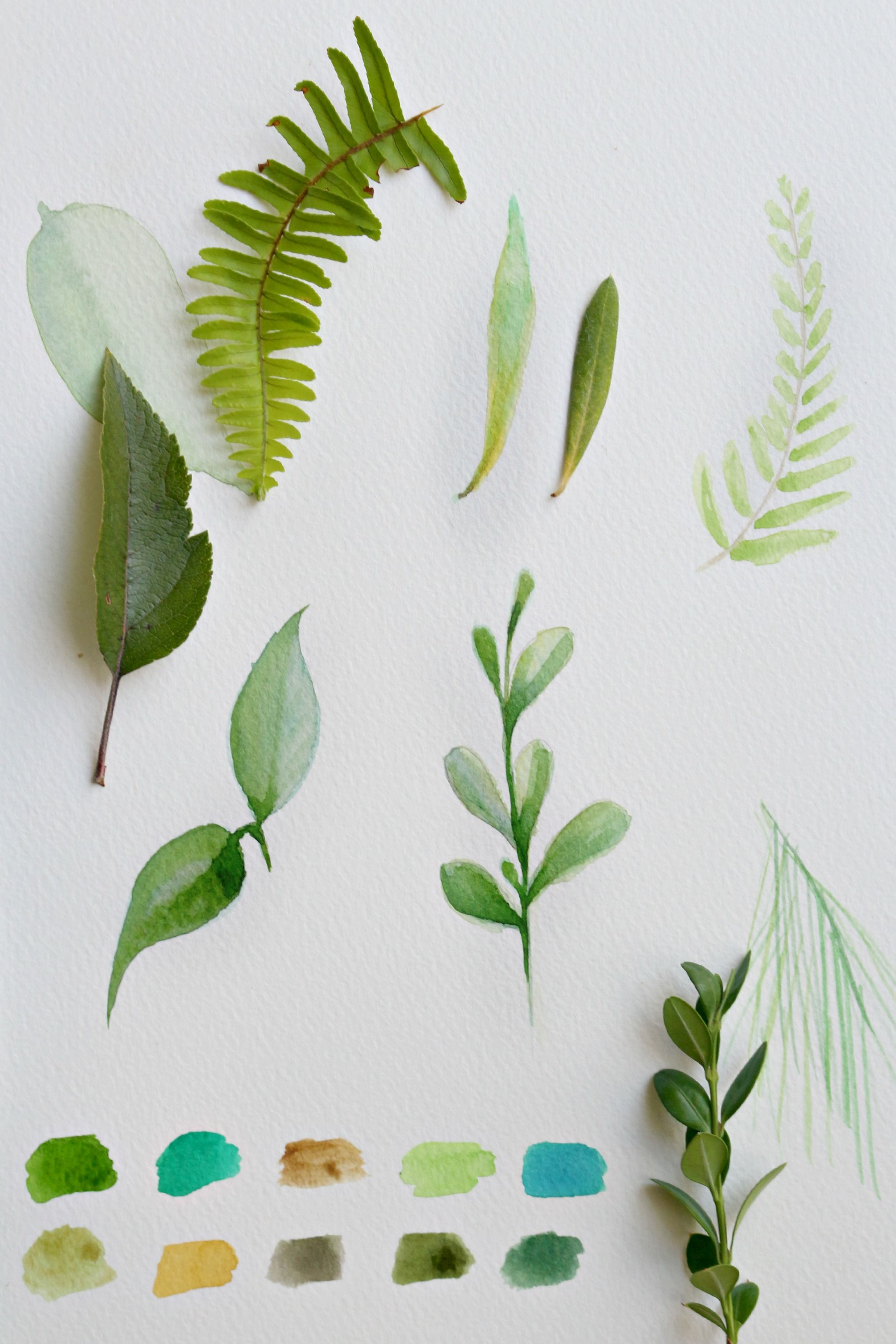 How To Paint A Basic Leaf With Watercolors Watercolor Leaves