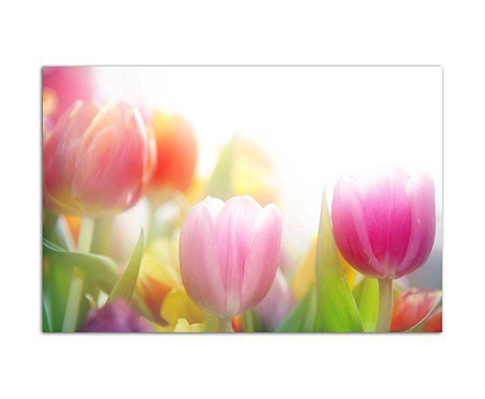 120x80cm - Fotodruck auf Leinwand und Rahmen Tulpen Blumen Frühling
