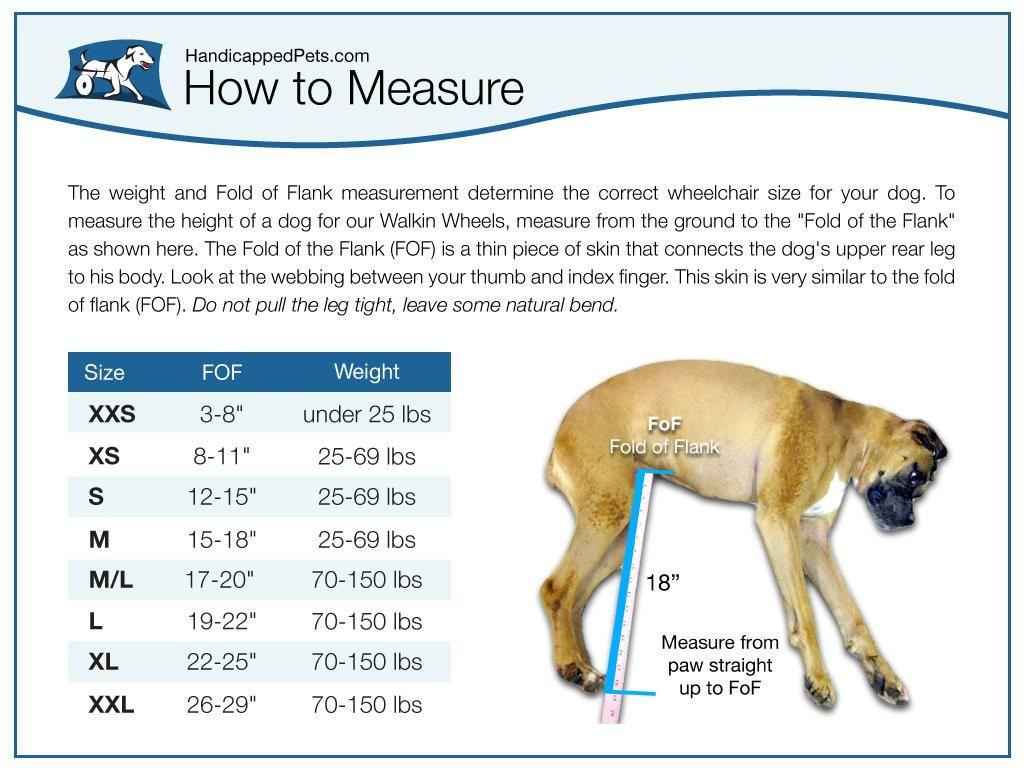 Plans Dog Wheelchair Google Search Dog Information Dog