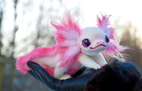 Axolotl #eyeshaveit