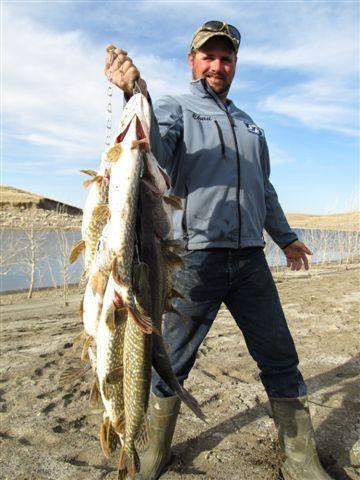 Northern fishing on the missouri river near pierre south for South dakota fishing