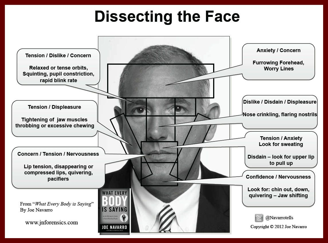 Deciphering The Face A Visual Body Language Guide By Joe