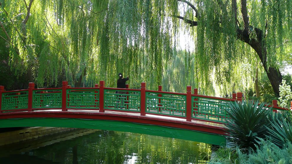 Chinese Garden Landscape Chinese gardens beijing canal garden china china pinterest chinese gardens beijing canal garden china workwithnaturefo