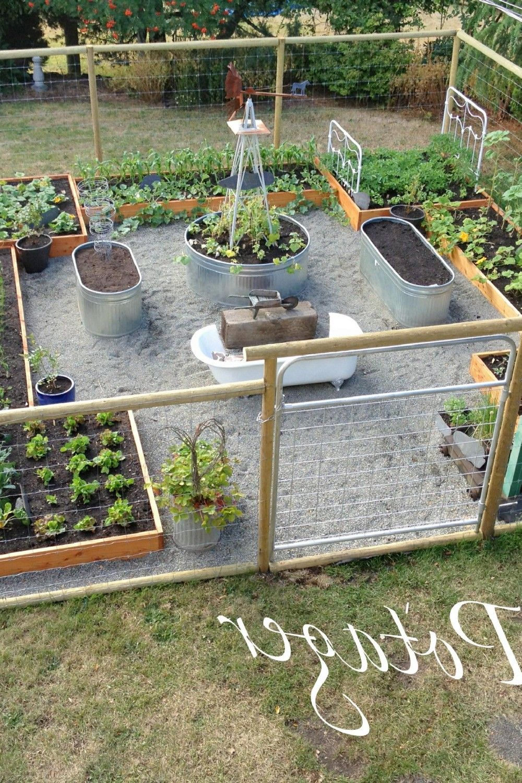 55 Beautiful Vegetable Garden Ideas Small Space Gardening Veggie Garden Veg Garden