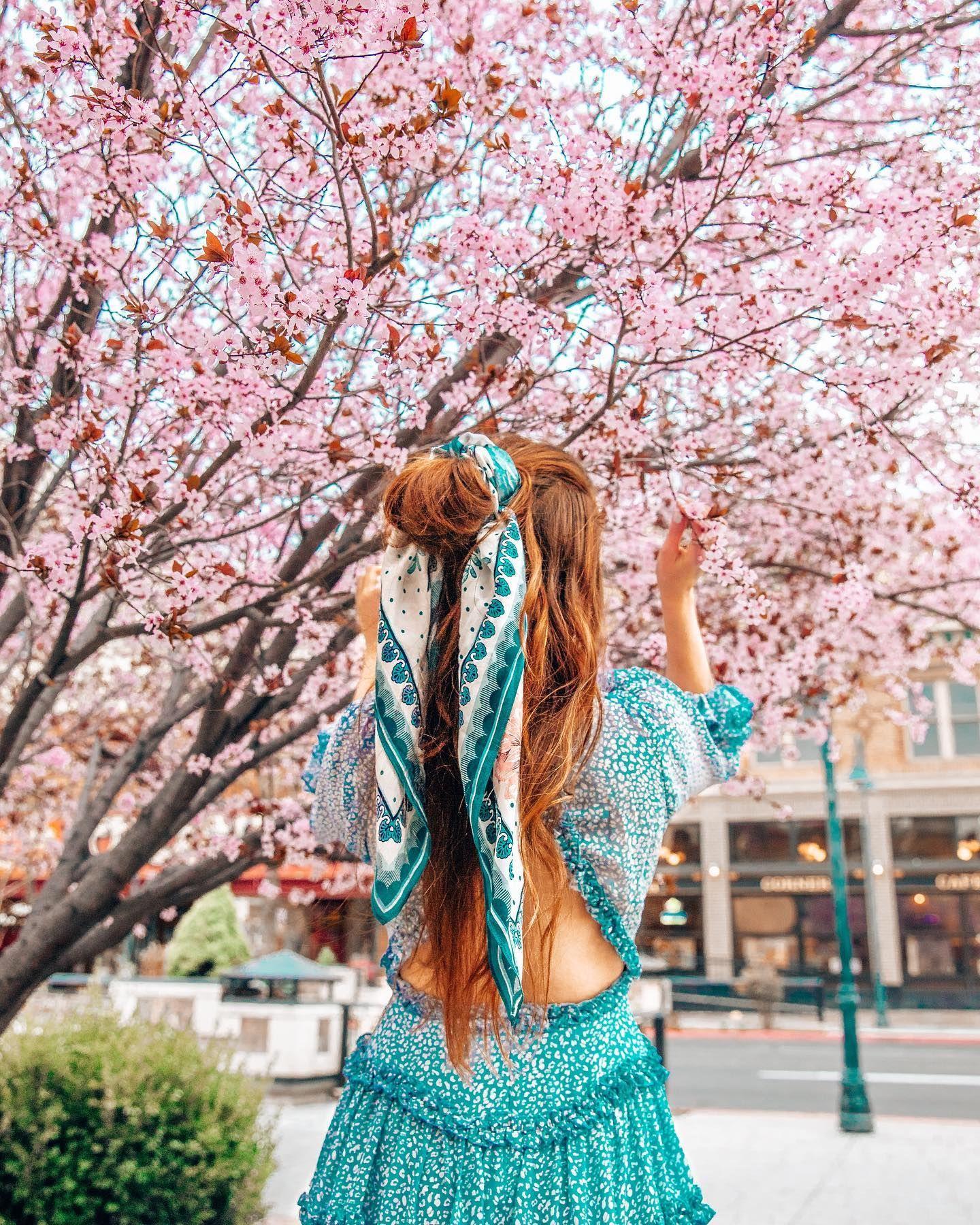 Cherry Blossoms In Reno Nevada Photo Instagram Instagram Photo