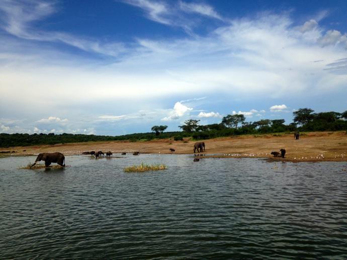 UGANDA Queen Elizabeth National Park