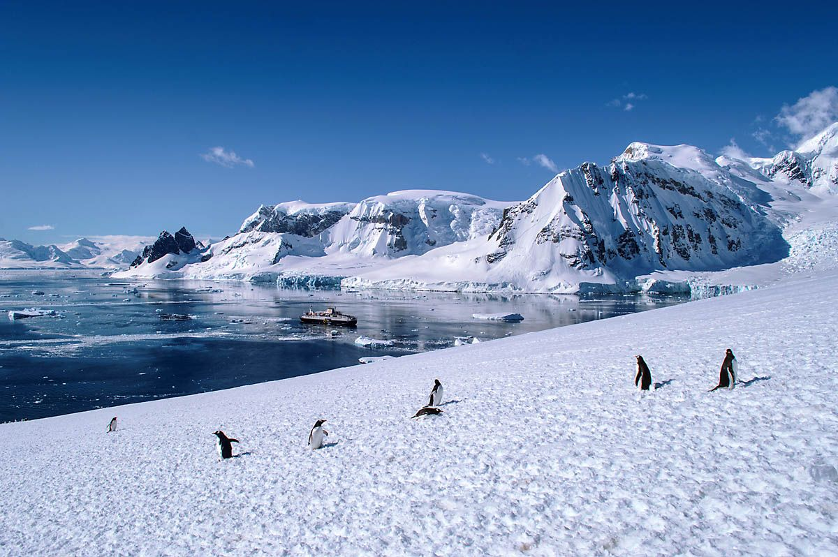 Antarctica with Quark Expeditions HeNeedsFood
