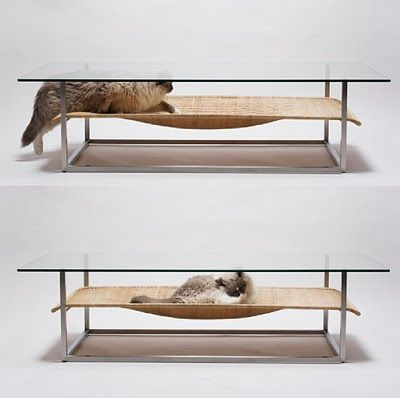 Cat Hammock and Coffee table combo
