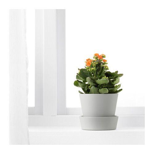 senap blumentopf mit untersetzer ikea mamas zimmer pinterest untersetzer mama und ikea. Black Bedroom Furniture Sets. Home Design Ideas