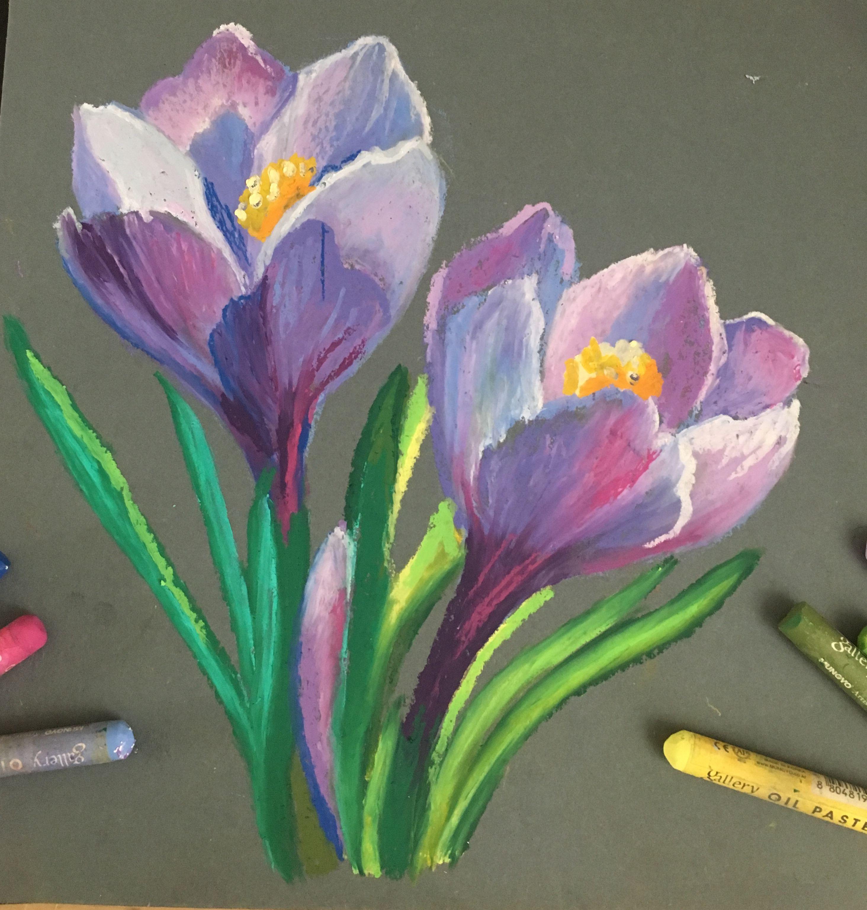 Malen Mit Olkreiden Pastell Malerei Pastell Kreide Pastell