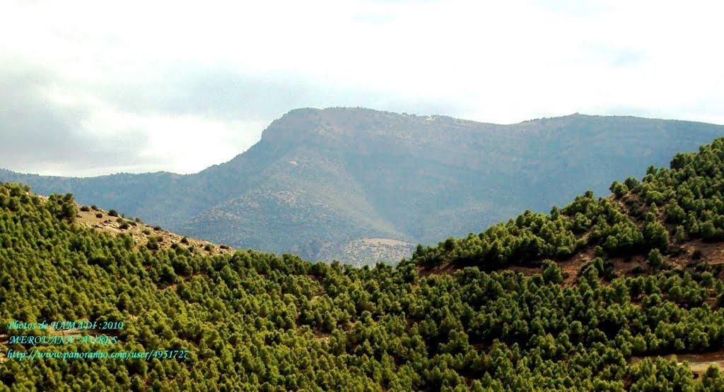 الطبيعية العالمية الجزائر 462874044.jpg