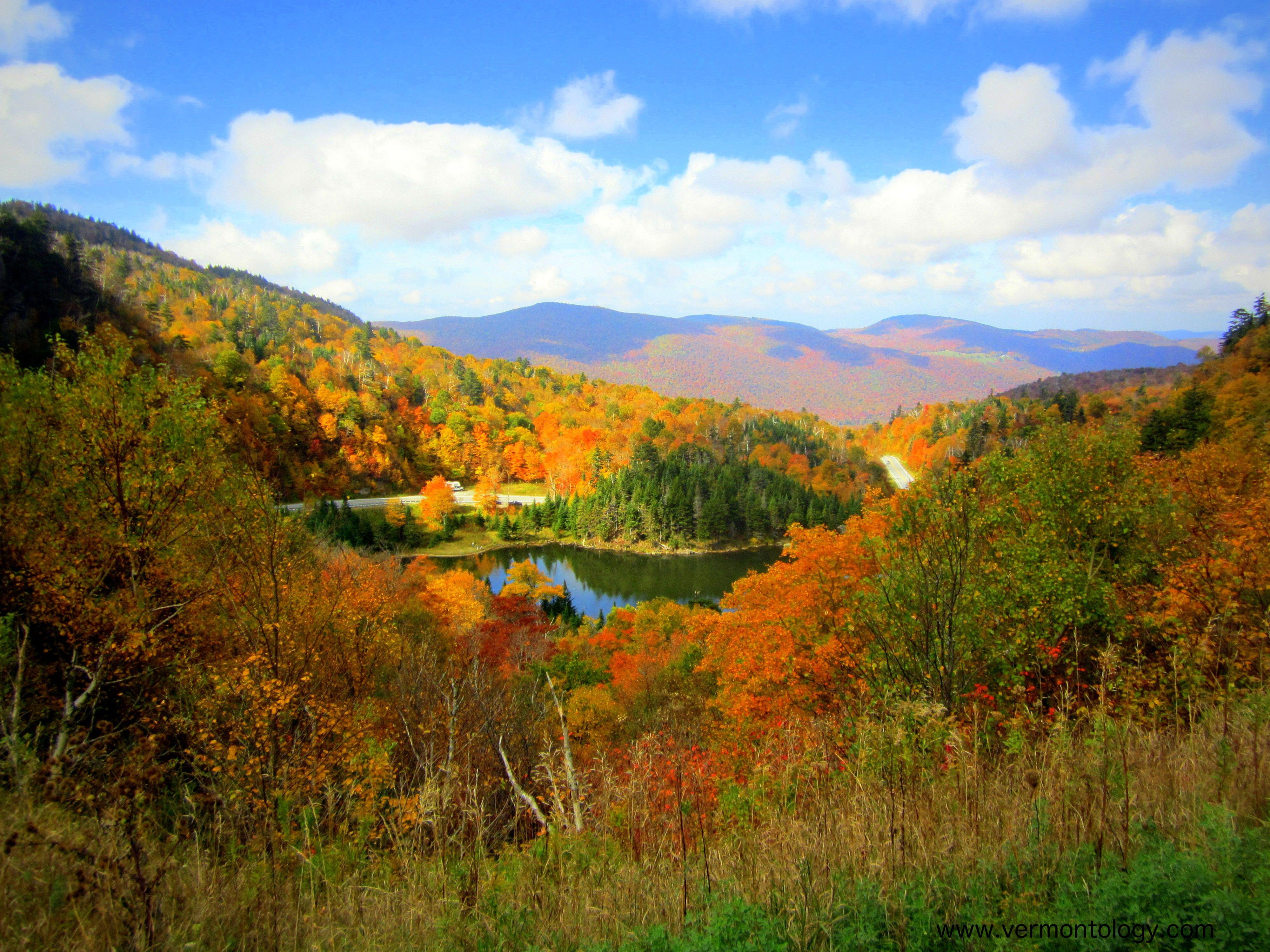 Beautiful fall foliage at appalachian gap vt