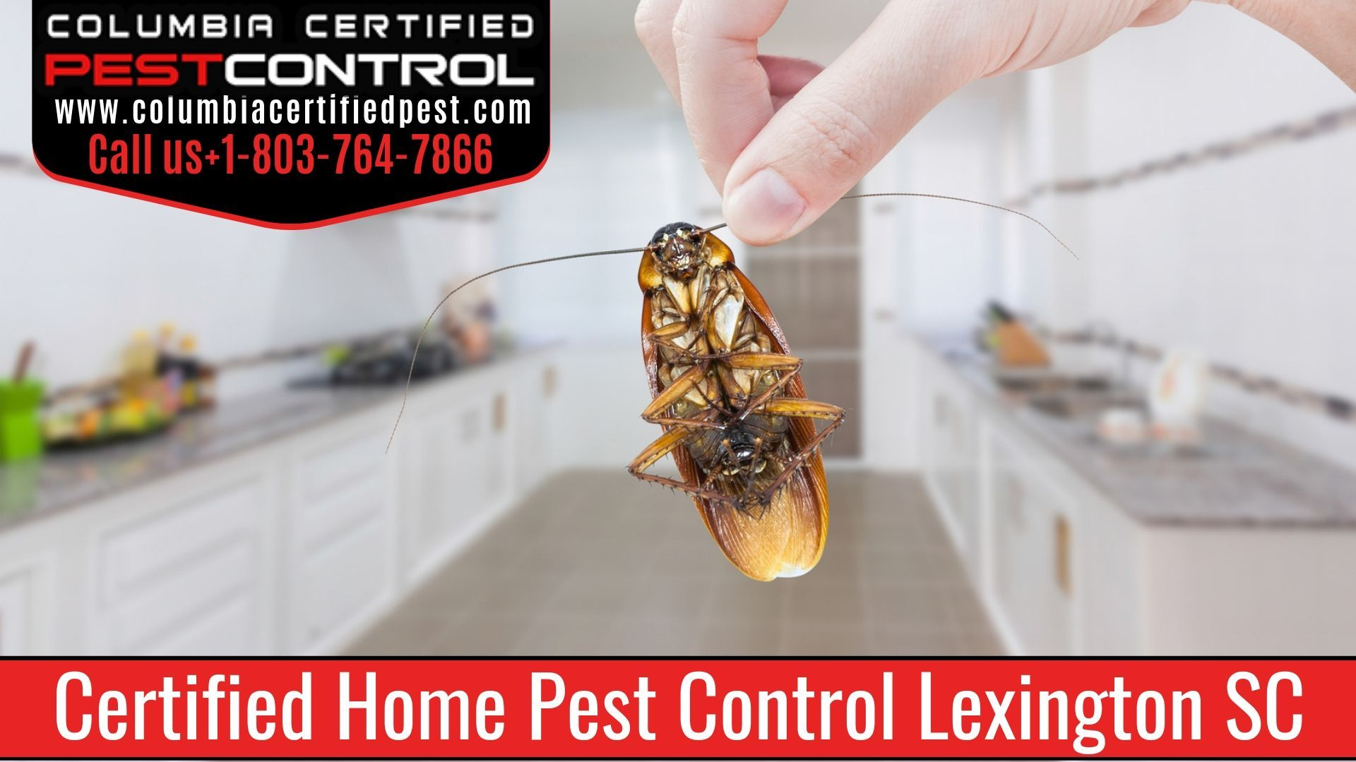 Home Pest Control Columbia Sc Pest Control Services Pest Control Pest Infestation