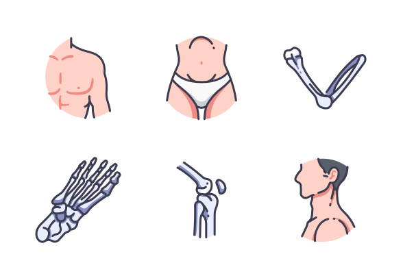 Human Body Filled Outline Icons By Maxicons Human Body Outline Human