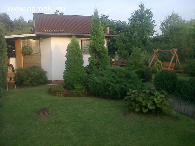 Ogrodek Dzialkowy Rod Malborska Z Pietrowym Domkiem Warszawa Ogrodki Dzialkowe Na Sprzedaz Rod Dzialki Plants Tree Tree Trunk