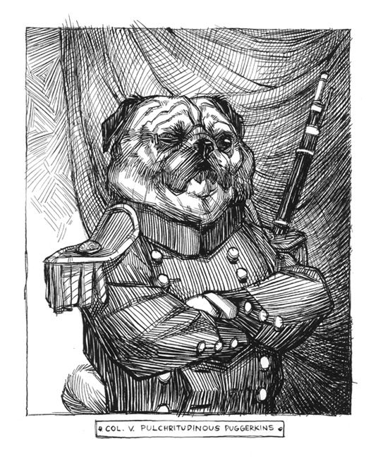 Colonel VP Puggerkins (Pen and Ink by Claire Hummel)