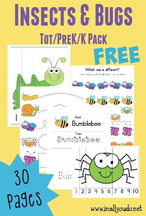 FREE Insect and Bug Tot Pack (Free Homeschool Deals ©) | Insectos y Aula
