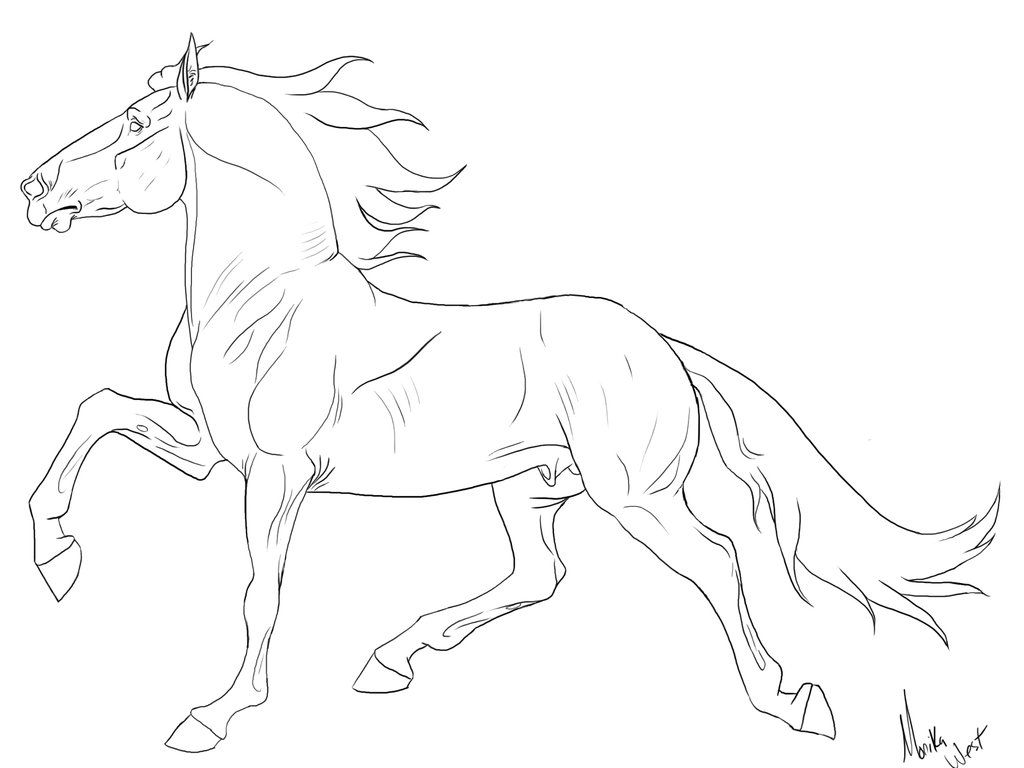 Tennessee walker horse by xxkincadesvanityxx on deviantart for Breyer coloring pages