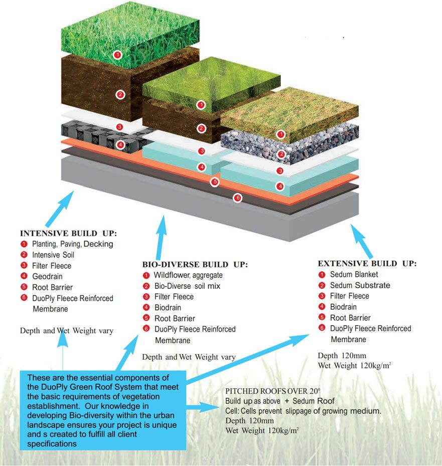Green Roofs Eco Friendly Flat Roofing Duoply Ar Systems Green Roof Benefits Green Roof Roof