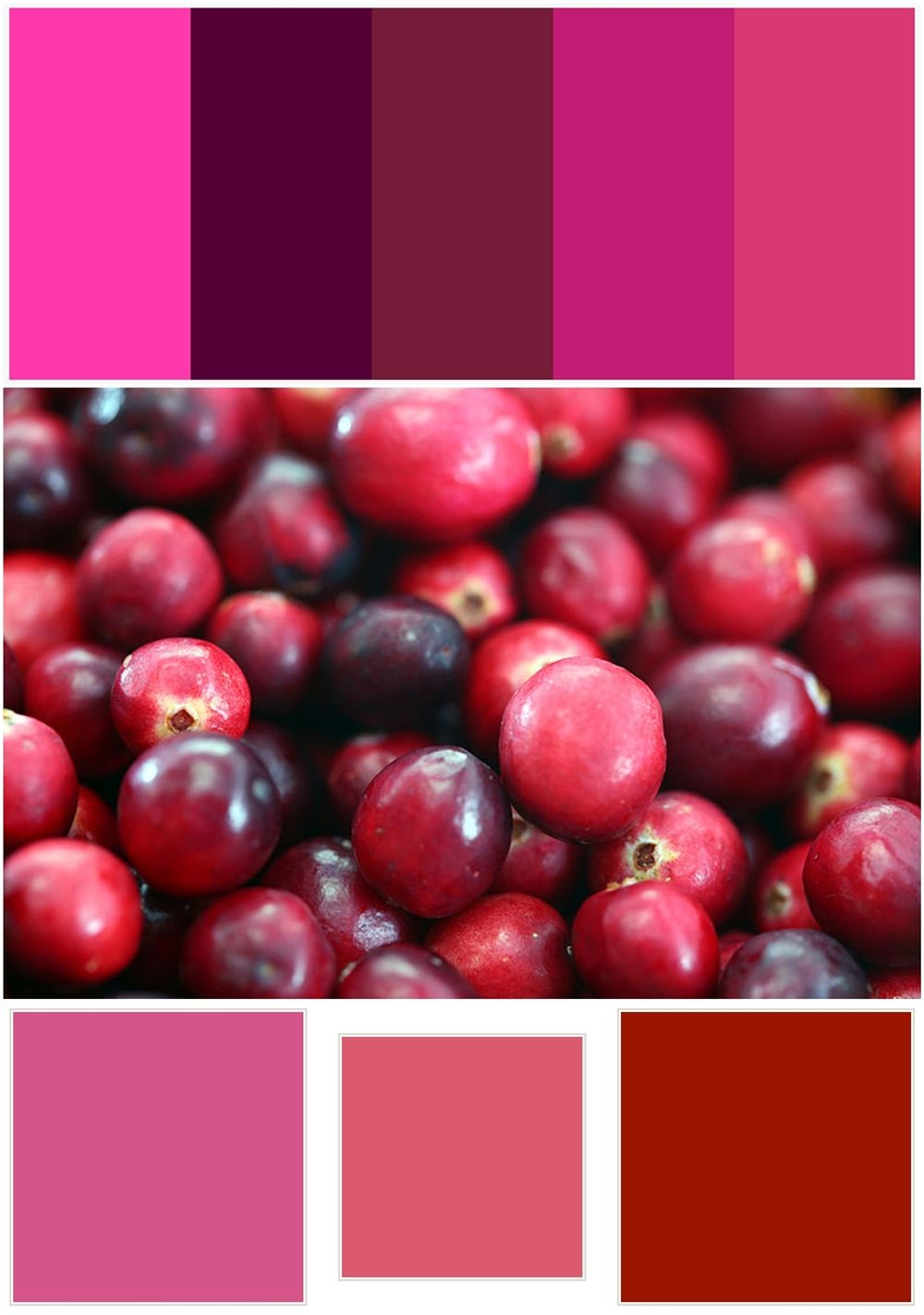 Color Trend: Cranberry Love