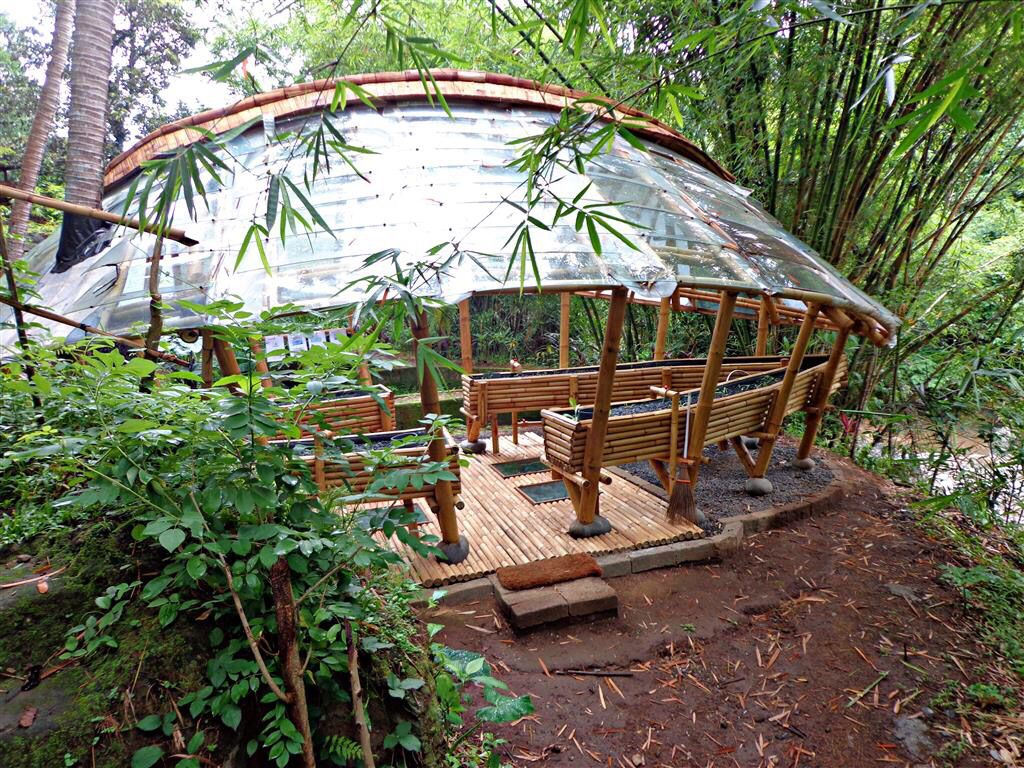 Green School Bamboo Aquaponics System Made By Ibuku