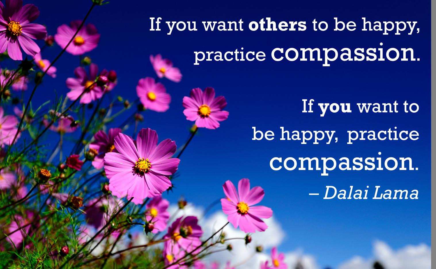 Compassion quote Dalai Lama