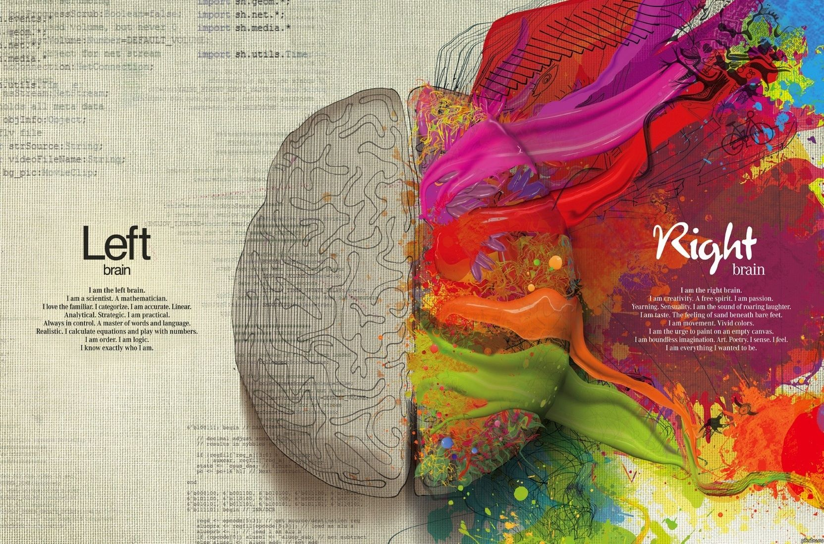 Drawing on emotional ties between the left and right brain. This beautiful illustration spread shows creativity, free spirit and passion of the right brain vs. the familiar, accurate and linear.