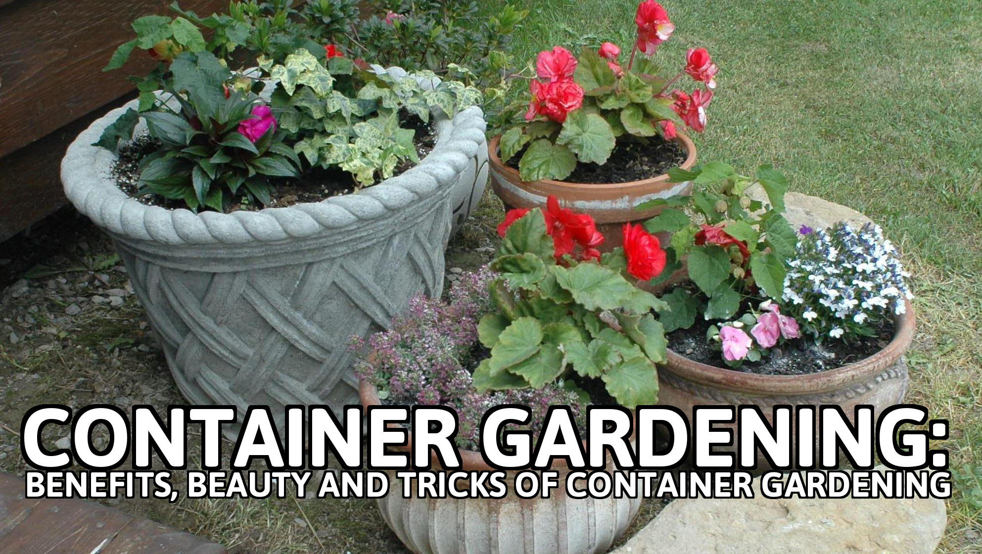 #Container #Gardening Is All About Using #Flower #Pots, #Planters And