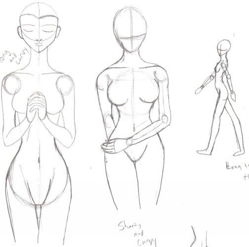Drawing the female backside drawing the form of the body takes drawing the female backside drawing the form of the body takes on so many different ccuart Gallery