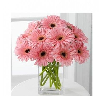 Order Gerbera Flowers Online Send Gerberas Flowers In India With Same Day And Midnight Delivery Flower Arrangements Pretty Flowers Beautiful Flowers