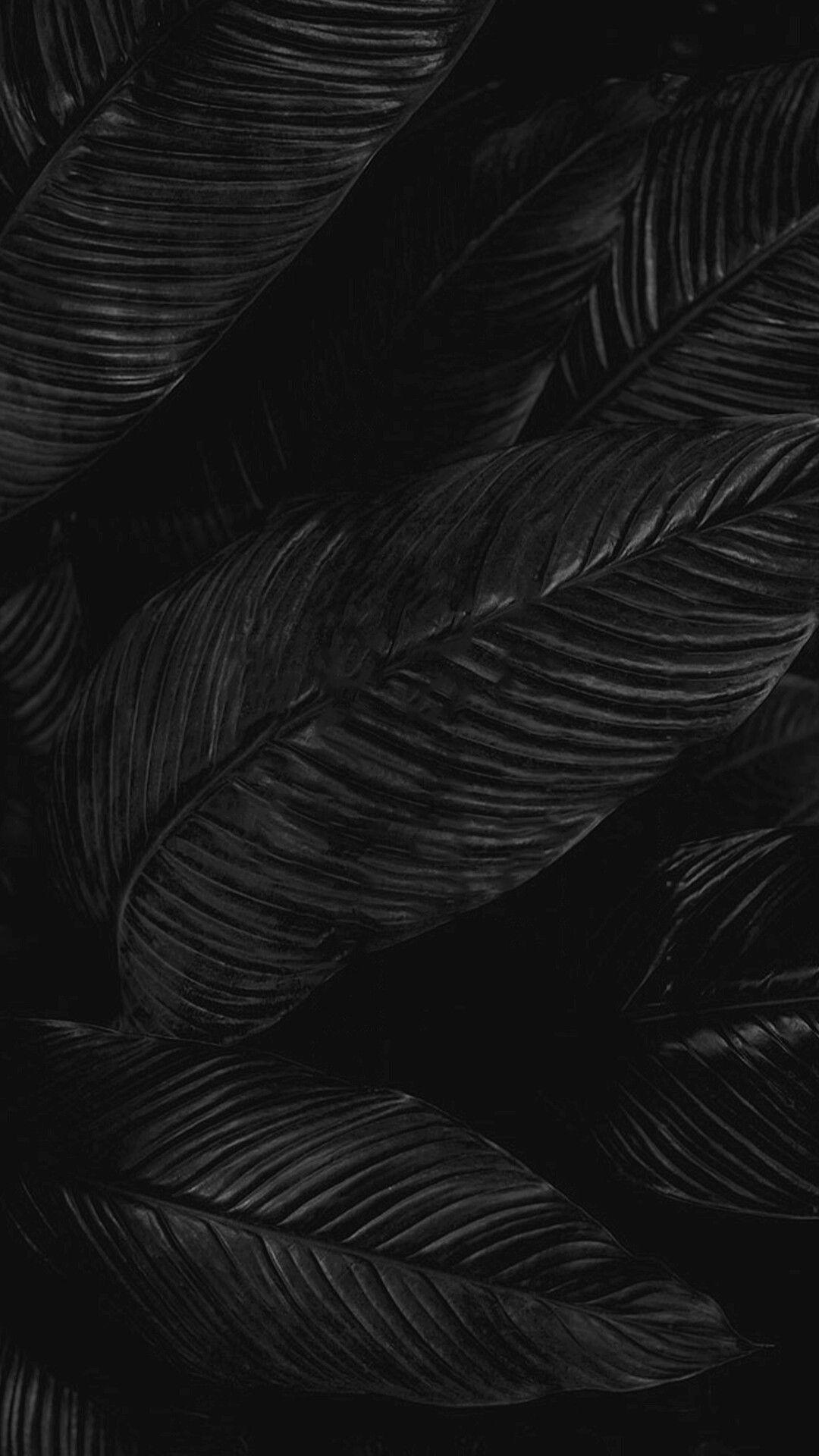 blackwallpaperiphone Black phone wallpaper, Black