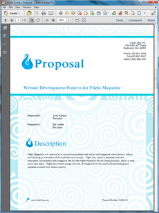 website development proposal letter