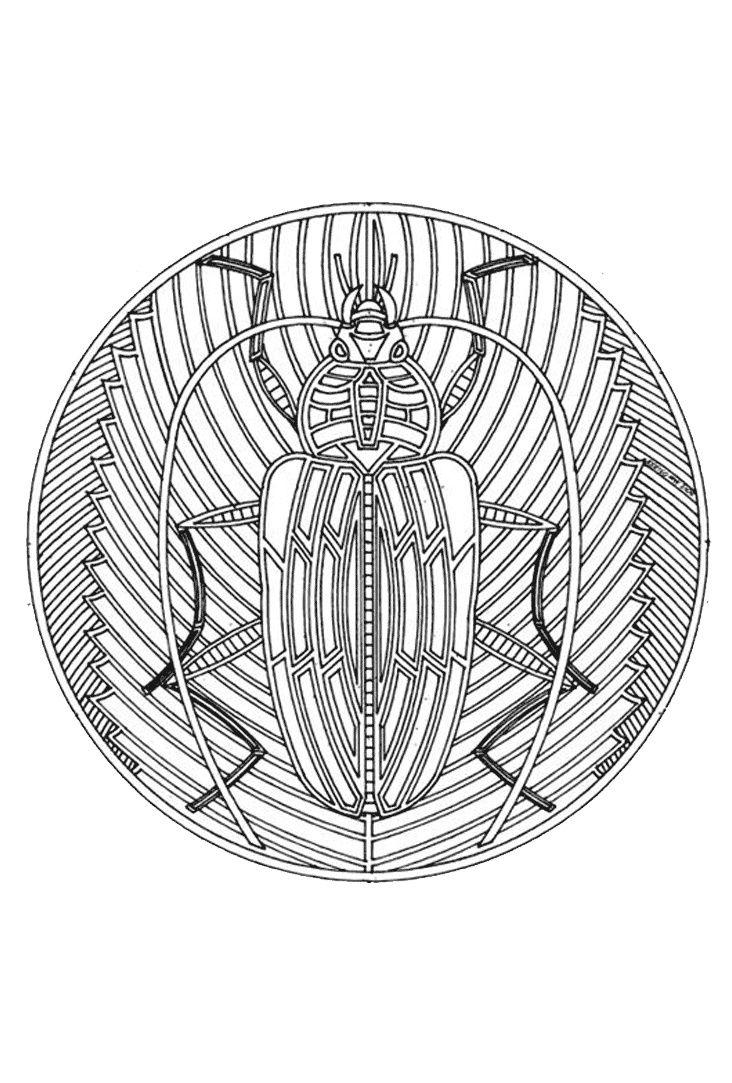 Pin Op Mandalas