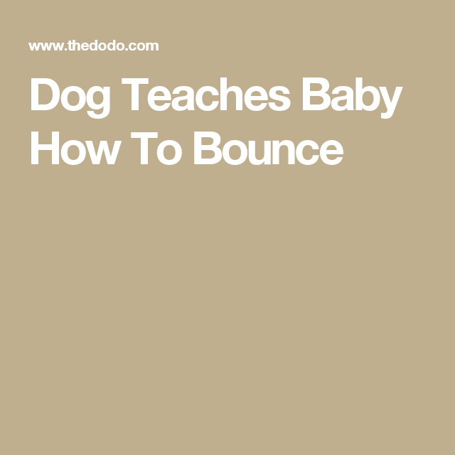 Dog Teaches Baby How To Bounce