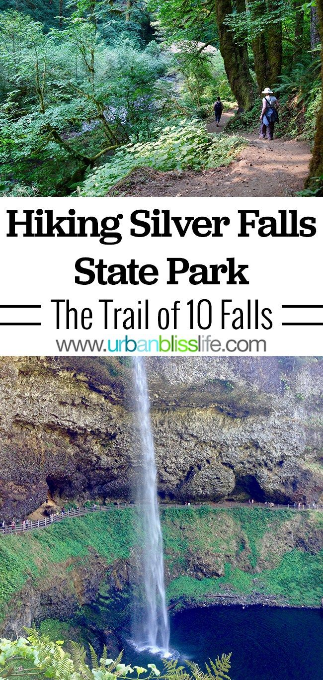 Silver Falls State Park Hikes: Trail of Ten Falls | Urban Bliss Life
