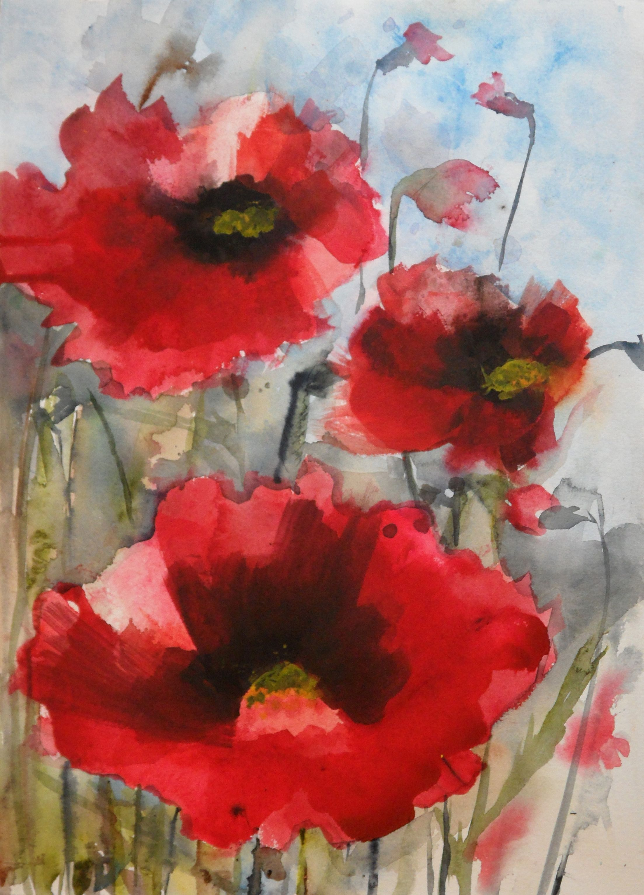 Red Poppies (With images) Watercolor poppies, Poppy