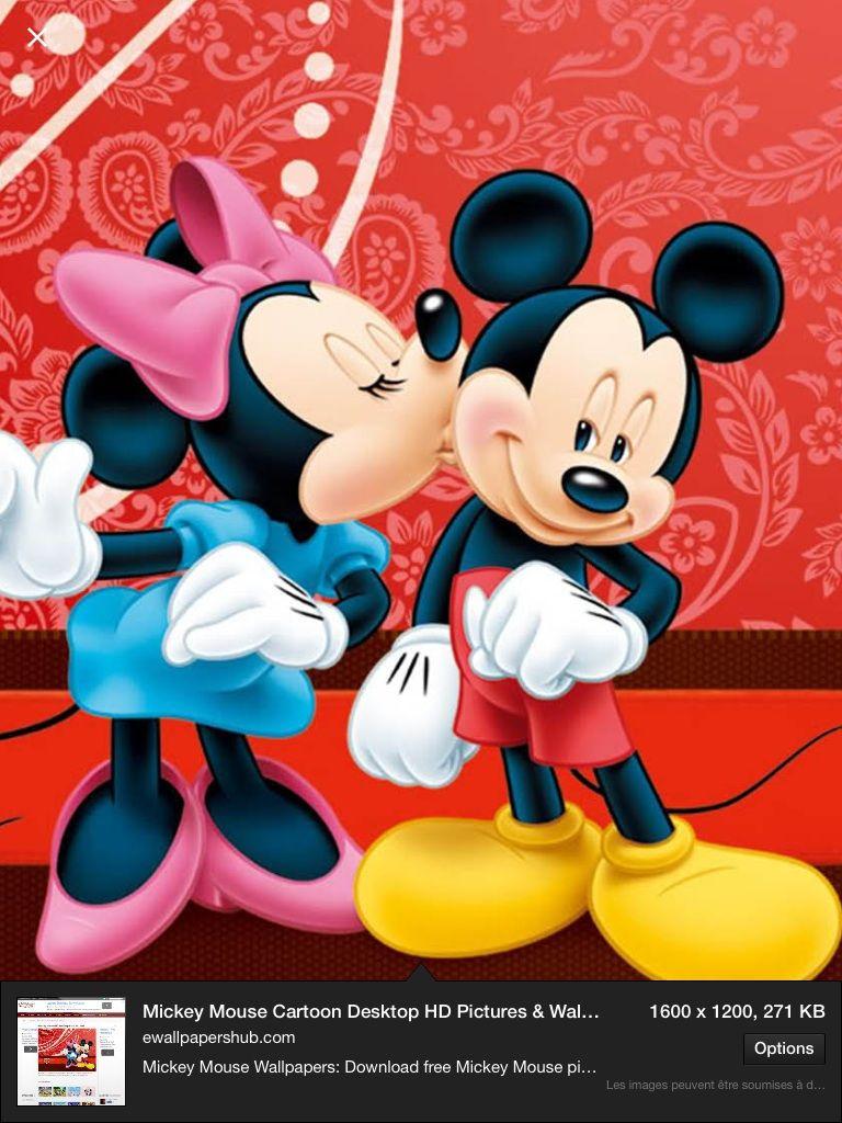 Mini et Mickey