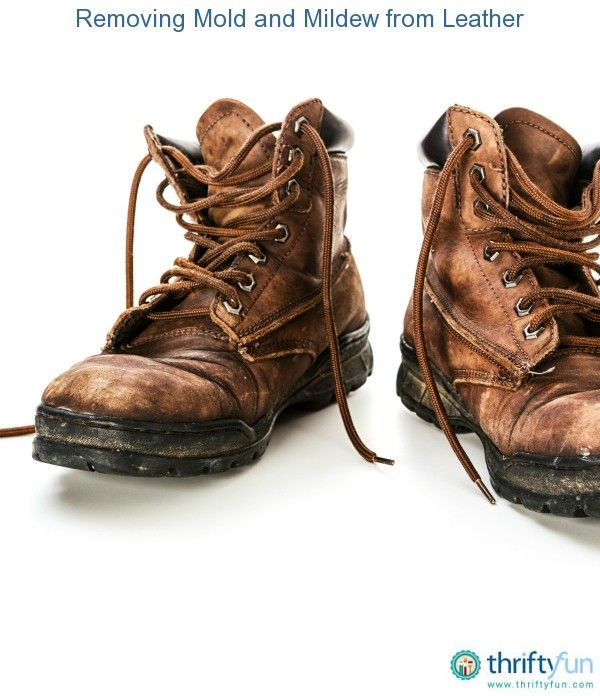 Removing Mold And Mildew From Leather How To Wash Shoes Leather